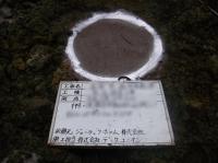 横浜市南区 輸入住宅 施工例 (3).JPG